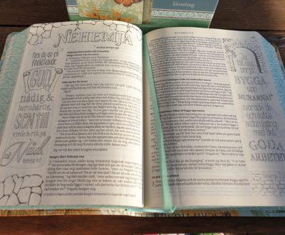 Inspirationsbibeln uppslag